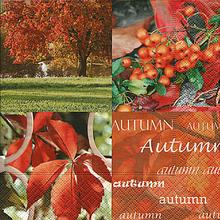 11628 AUTUMN NATURE 25X25 - Foto0