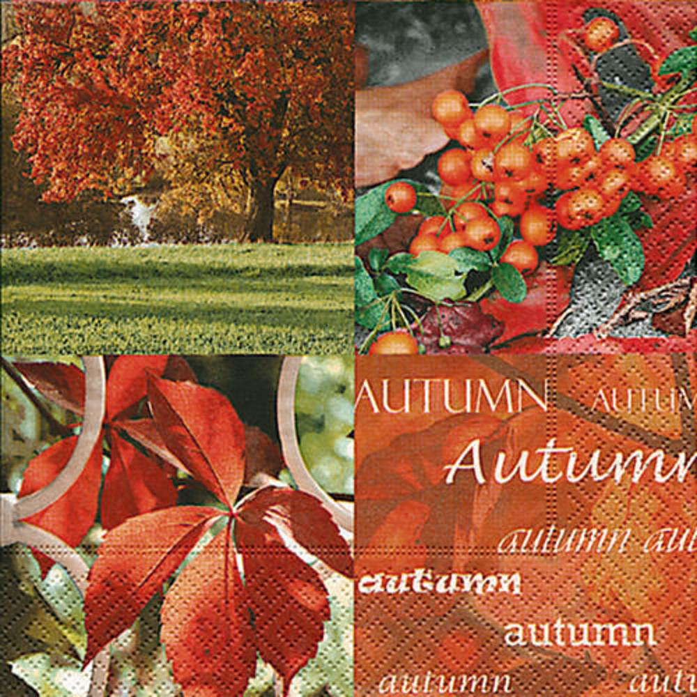 11628 AUTUMN NATURE 25X25